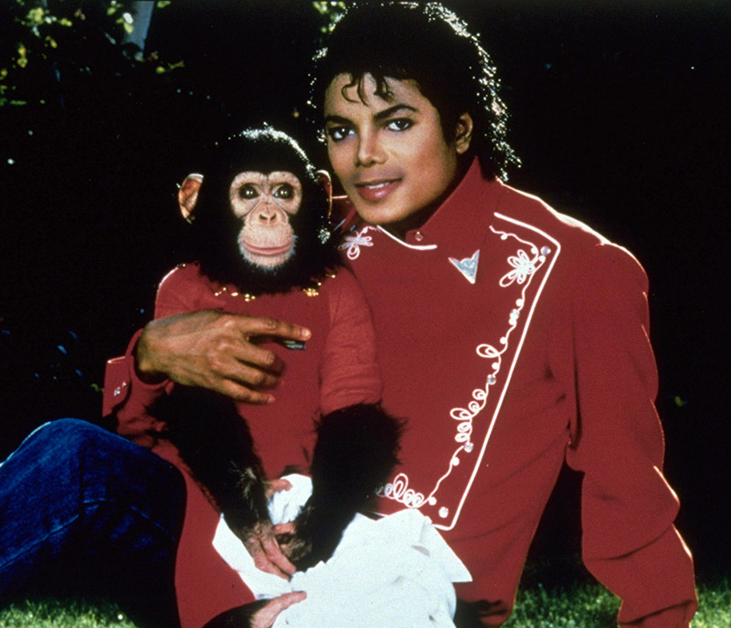Bubbles the Chimp and MJ